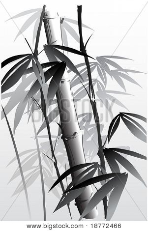 vector illustration of an oriental style painting of bamboo