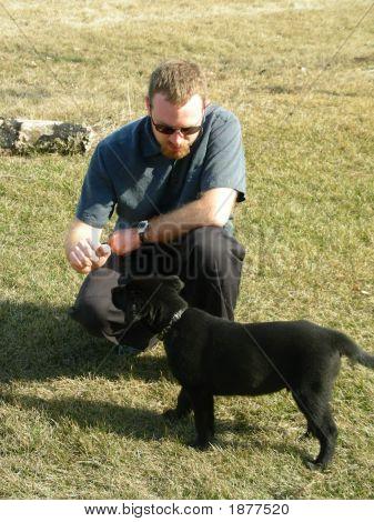 Puppy Training (Sit)