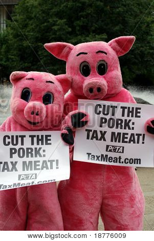 ST PAUL - SEPT 4: PETA demonstrators dressed as pigs hold posters demanding taxation on meat as they stand outside the Republican National Convention on September 4, 2008 in St Paul, Minnesota.