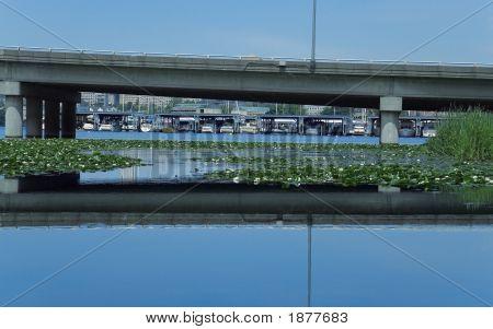 Urban Freeway Bridge