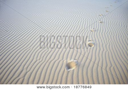 Footsteps in the white gypsum dunes just after sunset in the desert at the White Sands National Monument in New Mexico