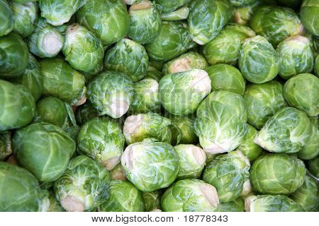 A background of fresh brussel spouts for sale at a market