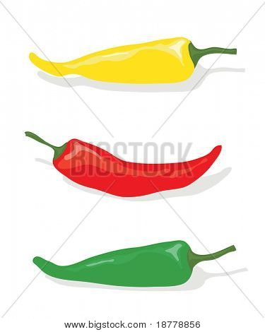 A vector illustration of red, green and yellow chili peppers on white background