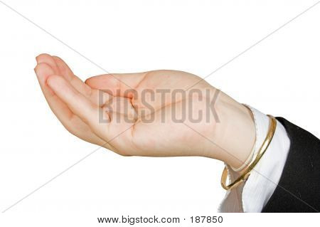 Business Hand Holding Something Of Your Choice