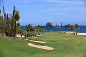 foto of cortez  - Golfing on the 9th hole on Palmilla in Cabo Mexico - JPG