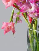 picture of gladiola  - Bouquet of gladiolas in glass vase shaped like a shopping bag - JPG