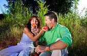foto of nic  - couple having a pic nic outdoor at sunset - JPG