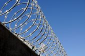 Closeup of razor wire