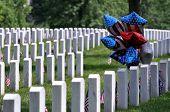 Постер, плакат: Отечественная воздушные шары на Арлингтонском национальном кладбище в Арлингтоне Виргиния недалеко от Вашингтона в