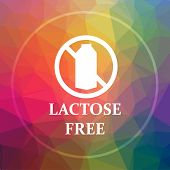 Lactose Free Icon poster