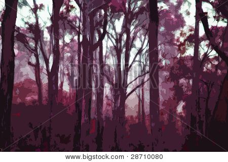 Forest of trees in twilight