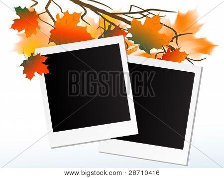 Marcos de fotos en blanco