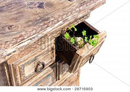 Retro cabinet with green leaves