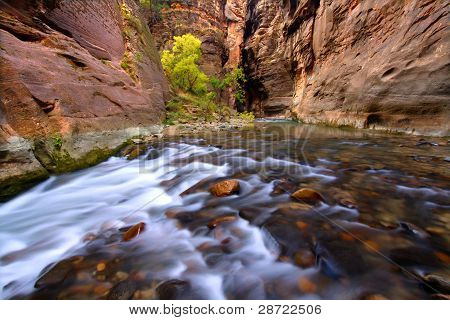 Narrows Of Zion Canyon