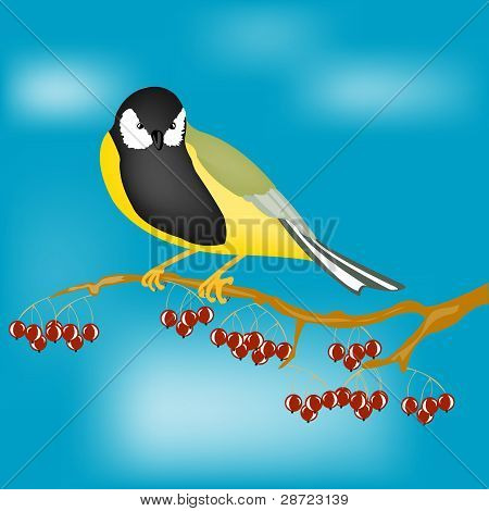 Small Bird On Branch With Berry