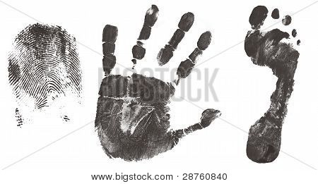 Finger, Hand And Feet Print