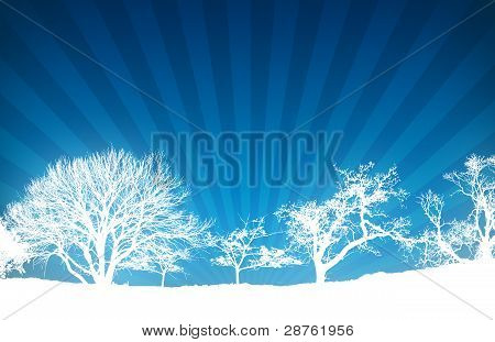 Winter Sunlight Rays Background