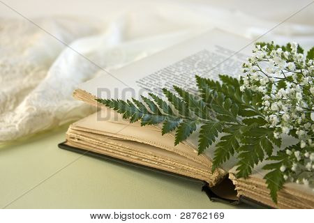 Opened Book With Fern Leaf And Baby Breath Flowers