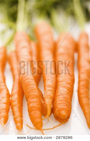 orange Karotten.