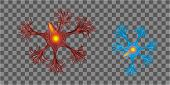 3d Human Neuron Isolated On Transparent Background. Realistic Vector Illustration. Template For Medi poster