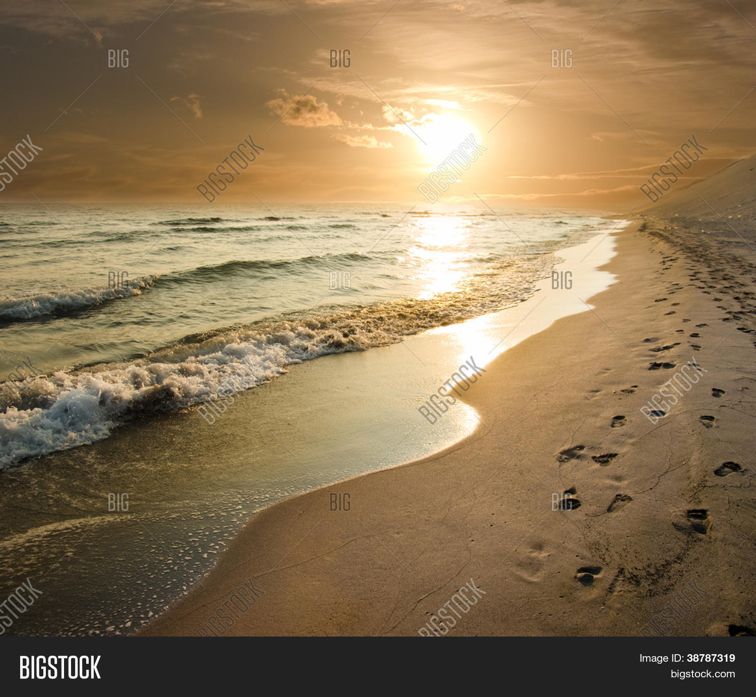 Golden Sunset On Sea Shore Image & Photo | Bigstock