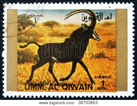Postage stamp Umm al-Quwain 1972 Tiger, Animal