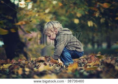 Little boy and autumn leaves