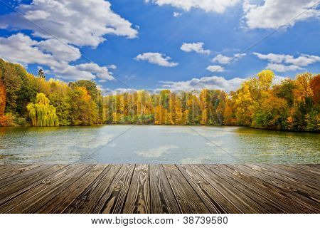 wood textured backgrounds in a room interior on the autumn forest backgrounds