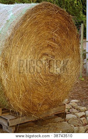 Closeup Of Rolled Bale Of Hay