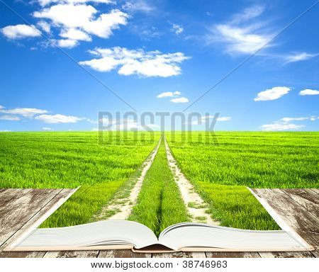 Open book of nature with way