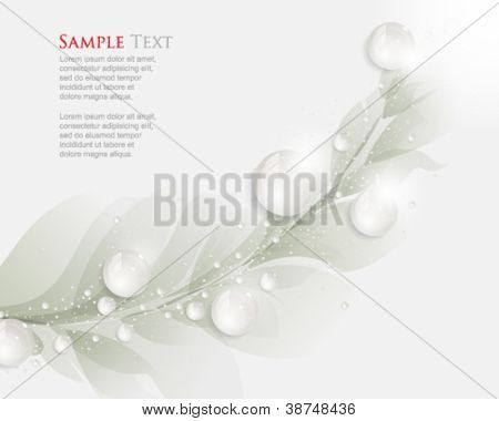 eps10 vector dew drops and leaf elements background
