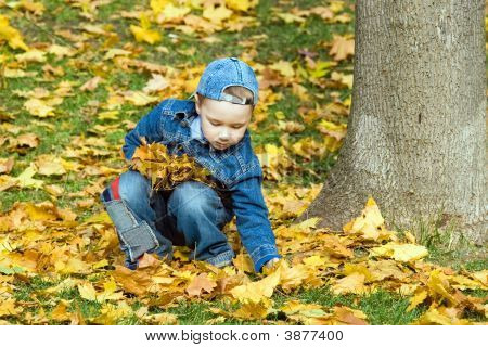The Boy In Autumn Park