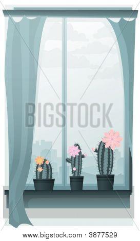 Kaktus-Fenster