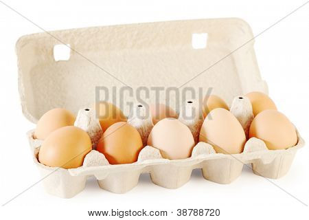 Close up of ten brown eggs in cardboard container isolated on white background.