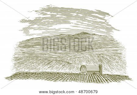 Woodcut Farm Barn And Field
