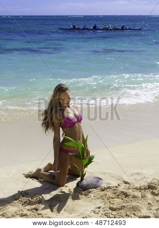 Girl On Beach With Baby Palm Tree