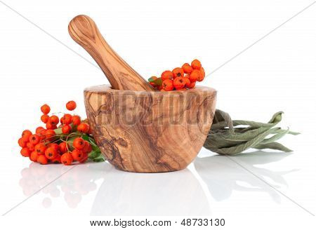 Wooden Mortar With Ashberry, On White Background