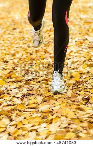 Runner On Autumn Season