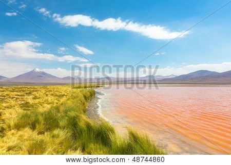 Landscape of the coast lake Laguna Colorada