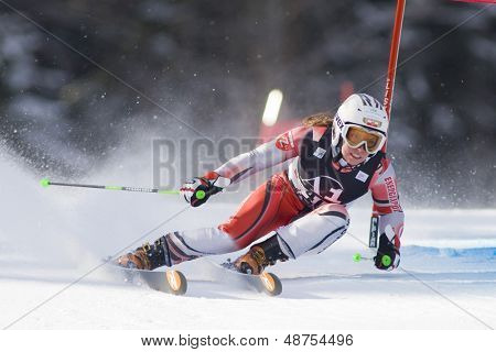LIENZ, AUSTRIA 28 December 2009. Gasienica DANIEL POL speeds down the course while competing in the first run of the women's Audi FIS Alpine Skiing World Cup giant slalom race.