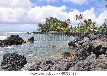rocky beach coastline
