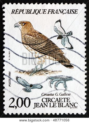 Postage Stamp France 1984 Short-toed Eagle, Bird Of Prey