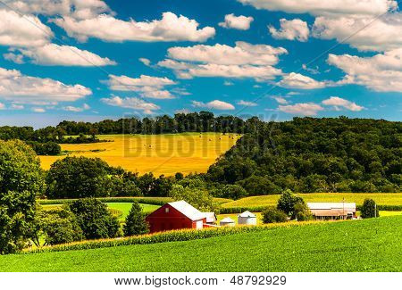 Farm Fields And Rolling Hills In Rural York County, Pennsylvania.