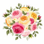 stock photo of rose bud  - Vector illustration of pink and yellow English roses - JPG