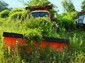 stock photo of kudzu  - An abandoned truck with an orange plow attachment rusts away in lush overgrowth of weeds and summer foliage with the cab full of leaves behind the windshield - JPG