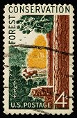 Conservation 1958