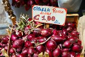 Italy, Area Calabria,  Red Onion Of Tropea (cipolla Rossa)