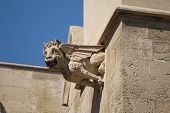picture of gargoyles  - Gargoyle in City Hall building of Palma de Mallorca Spain - JPG