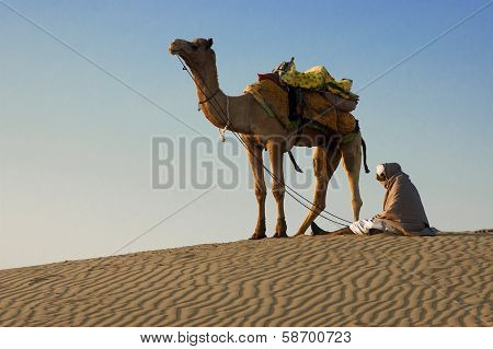 Cameleer At The Sam Sand Dune, Thar Desert