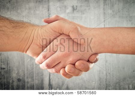 Friendly Handshake. Man And Woman Shaking Hands.